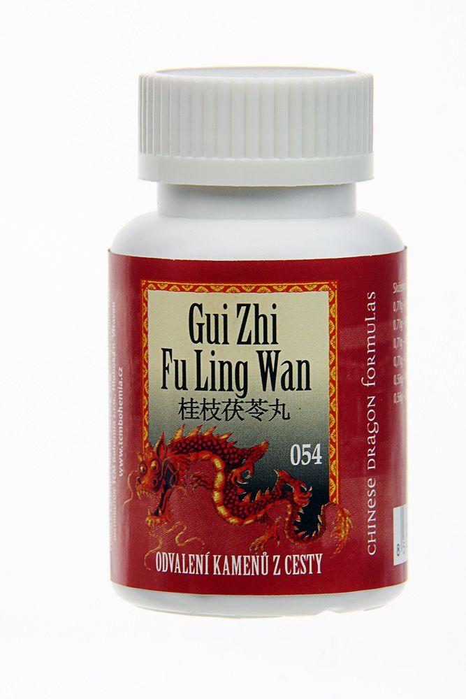 054 GUI ZHI FU LING WAN - ODVALENIE KAMEŇOV Z CESTY